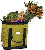 Detours bags are a fun way to carry your cargo!