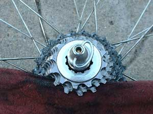 Clean the cassette cogs with a rag and shoe-shine motion.