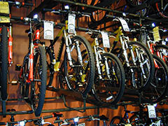 We have a wide assortment of bicycles!