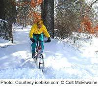 Experience a winter wonderland
