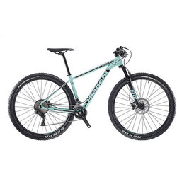 Bianchi Grizzly 29.1