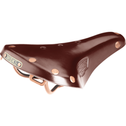 Brooks B17 Special Short