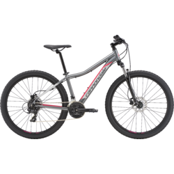Cannondale Foray 2 (f17)