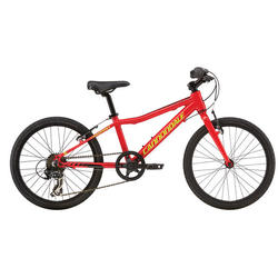 Cannondale Street 20