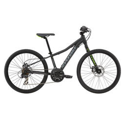 Cannondale Street 24