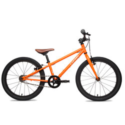 Cleary Owl 20-inch 1 Speed