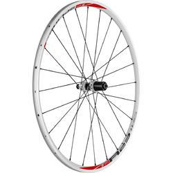 DT Swiss R 23 Spline Rear Wheel