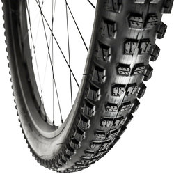 e*thirteen by The Hive LG1 EN Plus 29-inch Tubeless