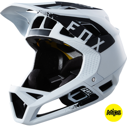 Fox Racing Proframe Mink Helmet