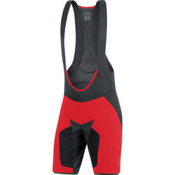 Gore Wear Alp-X Pro 2 in 1 Shorts