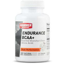 Hammer Nutrition Endurance BCAA+
