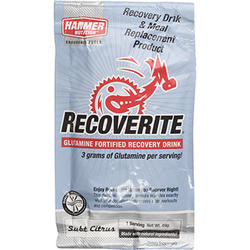 Hammer Nutrition Recoverite (Single Serving)