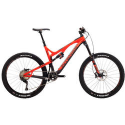 Intense Cycles Tracer T275C Expert