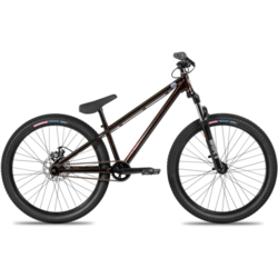 Norco Ryde 24