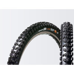 Panaracer CG All-Condition 26-inch Tubeless Compatible