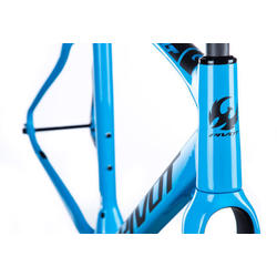 Pivot Cycles Vault Frame