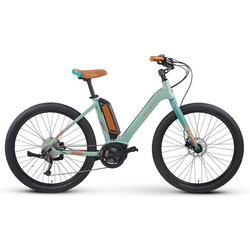 Raleigh Electric Venture iE Step Thru