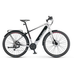 Raleigh Electric Sprint iE