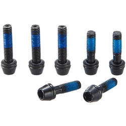 Ritchey Replacement Stem Bolts: 7 Pieces for Superlogic C260