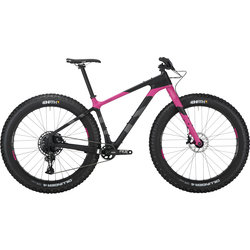 Salsa Beargrease Carbon NX Eagle