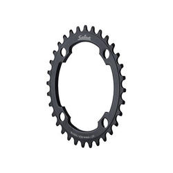 Salsa Chainring (74mm BCD)