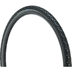 Schwalbe Marathon Winter Plus 20-inch