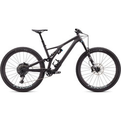 Specialized Stumpjumper EVO Pro 29