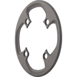 SRAM All-Mountain Carbon Chainring Guard