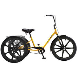 Sun Bicycles Atlas Transit Trike includes Zytel ® Nylon Mag Wheels