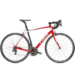 Trek Carbon Road Bike Rentals