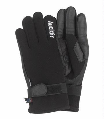 Auclair Skater Glove