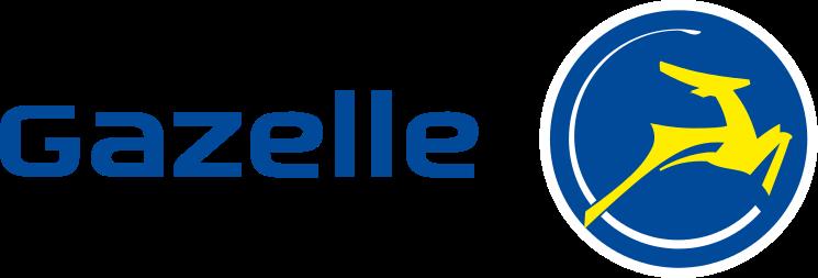 Gazelle bike repair, Gilbert, Mesa, Higley, Chandler, Queen Creek, Ahwatukee