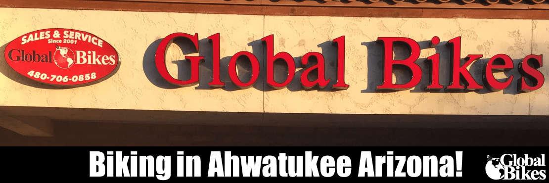 Global Bikes & E-Bikes - Ahwatukee, 3636 E Ray Rd #6, Phoenix, AZ 85044, 33.31684795803008, -112.00445652008057
