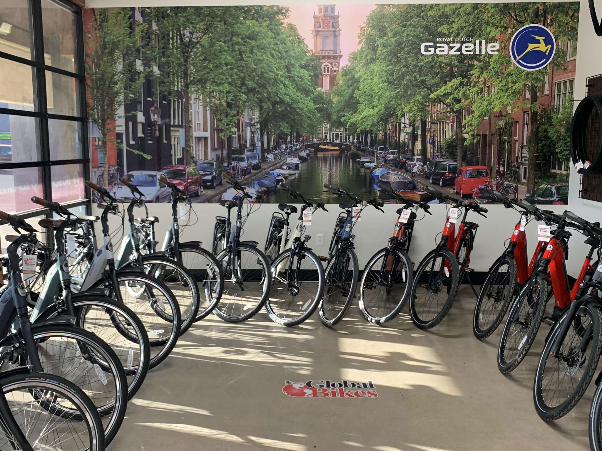 Gazelle Electric Bike Dealer in Arizona
