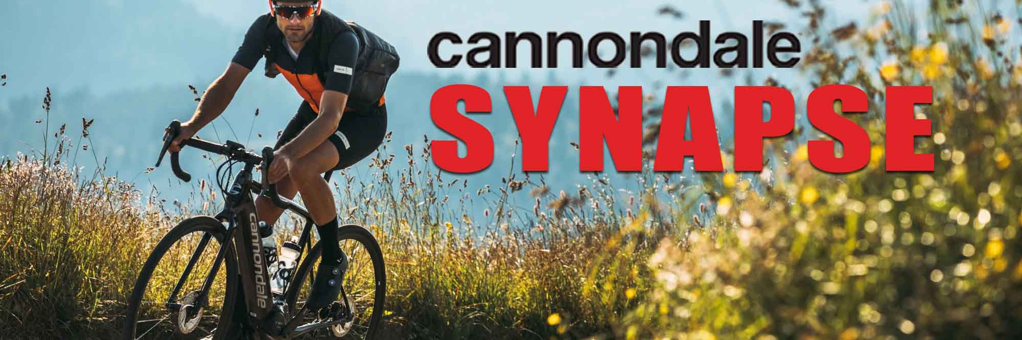 The Cannondale Synapse