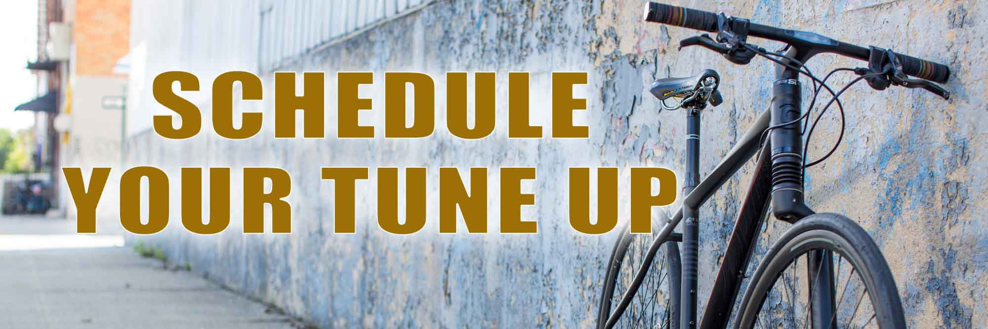Schedule Your Tune Up