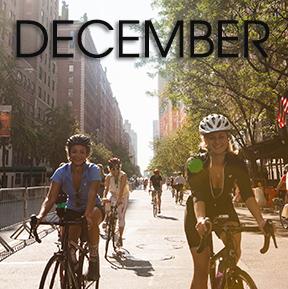 Bicycle Habitat Rentals for December