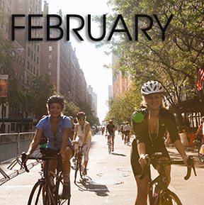 Bicycle Habitat Rentals for February