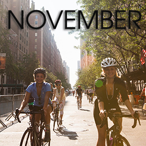 Bicycle Habitat Rentals for November