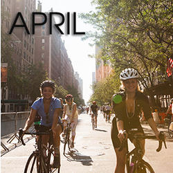 Bicycle Habitat Rentals for: April