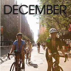 Bicycle Habitat Rentals for December