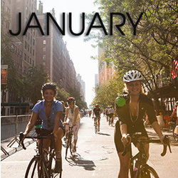 Bicycle Habitat Rentals for January