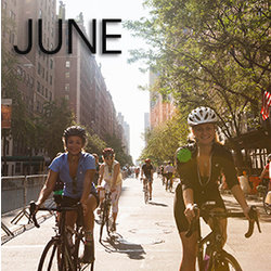 Bicycle Habitat Rentals for June