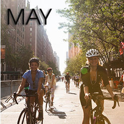Bicycle Habitat Rentals For May