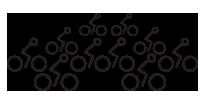 Trek Bicycle Store Events