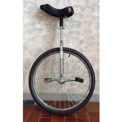 D'Amour Bicycle and Sport Unicycle 24