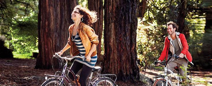 Comfort Bikes | Townie Bikes