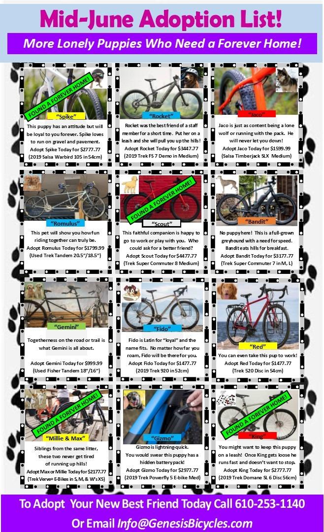 Adopt-a-Bike