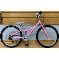 Used Trek MT200 24