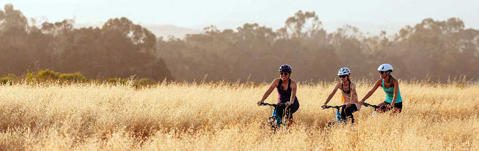 Liv mountain bikes for women are available on sale at Talbot's Cyclery in San Mateo